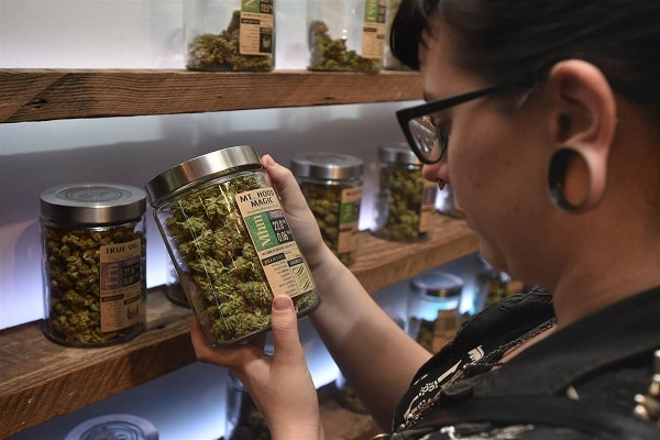 Marijuana Legalization Poles
